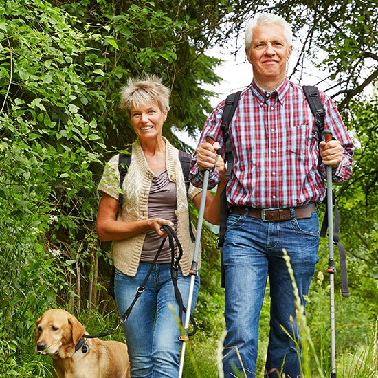 Senior couple of with a dog walking in a forest