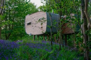 Unusual staycation idea - stay in a treehouse!