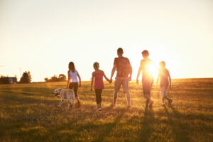 dog friendly places for a family holiday
