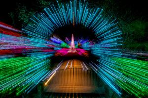 botanical gardens Christmas light show