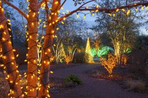 botanical gardens Christmas trail
