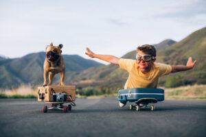 Unusual staycation ideas for a dog friendly holiday